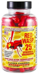Red Wasp-25